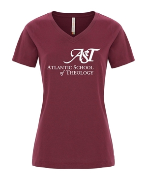 Picture of AST Ladies V-Neck T-Shirt